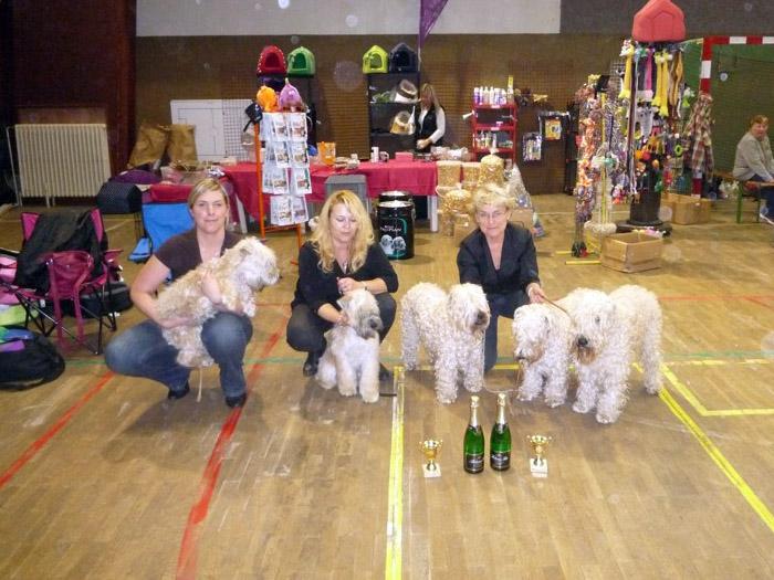 Best Breeders Group - Gobin, Goldie, Alisha, Klif, Kesha - 2nd place