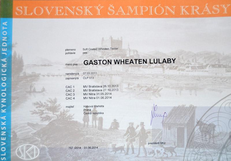 Slovakia Champion